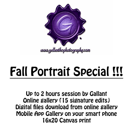 Fall Portrait Special